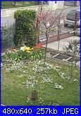 il giardino di ciana-immagini-091-jpg