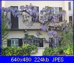 il giardino di ciana-immagini-122-jpg