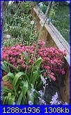 il giardino di ciana-immagini-062-jpg