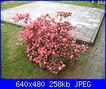 il giardino di ciana-immagini-003-jpg