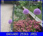 il giardino di ciana-immagini-002-jpg