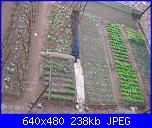 il giardino di ciana-immagini-022-jpg