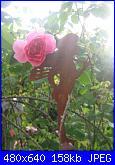 Il giardinetto di Kalè-img_0318-jpg