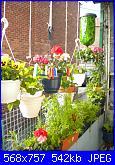 Pomodori appesi-photo-032-jpg