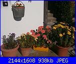 Il mio angolo fiorito! (Giusy)-pa300493-jpg