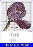 groups/schemi/pictures/163121-crocus-inverno.jpg