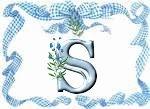 Immagine lettera S