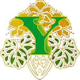 Immagine lettera Y