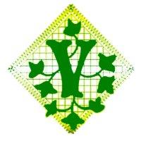 Immagine lettera V
