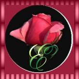Immagine lettera E
