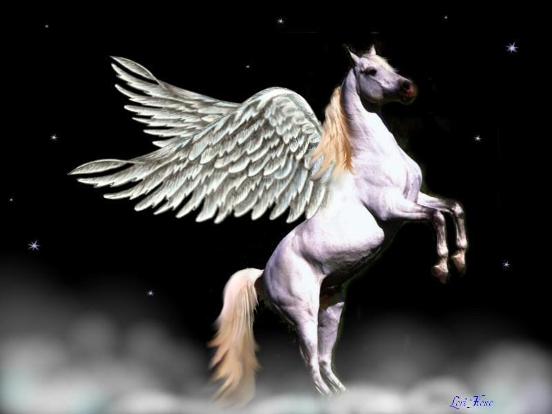 Flash sul mondo di tutto di pi pegaso for Disegni cavalli alati